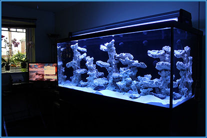 Aquarium now completely set up apart from the lighting