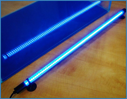 New Sea Star LED Lighting