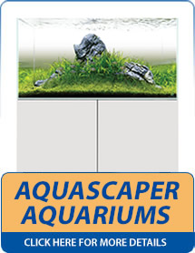 Evolution Aqua Aquascaper