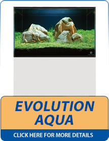 Evolution Aqua Aquariums