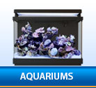 Display Aquariums