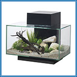 Fluval Edge 23 Litre in Black