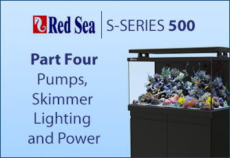 Part four, pumps, skimmer lighting and power